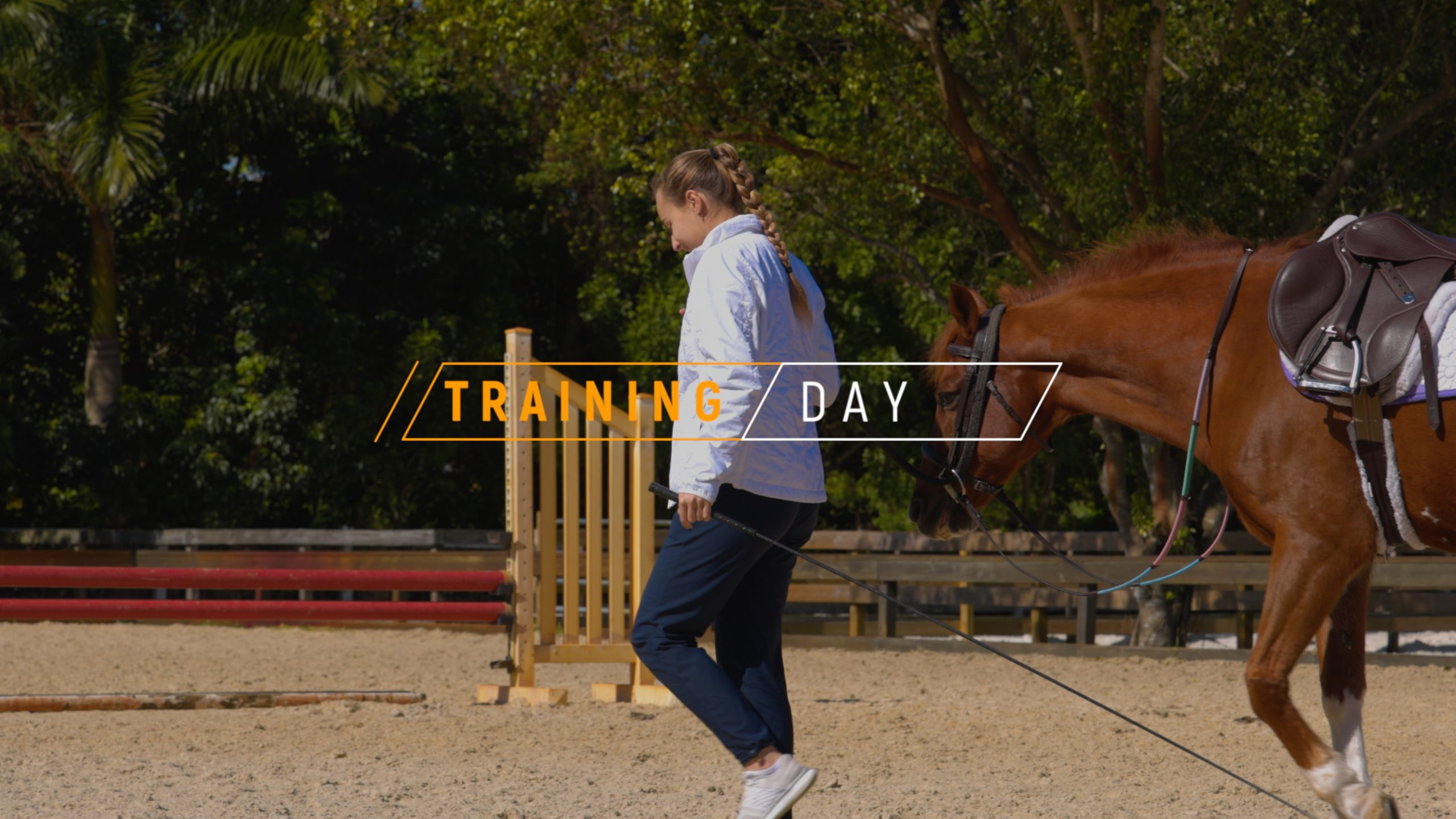 TRAINING DAY - EQUESTRIAN PENELOPE SHOT ON A (CANON EOS R5 120FPS)